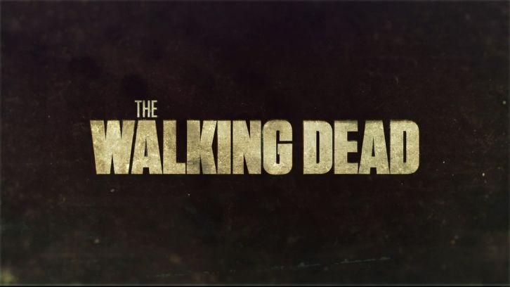 the-walking-dead-header.jpg